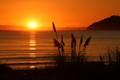 Sunset at Mahia Beach 2