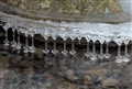 Icicles on a stream