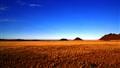 Namibia Life