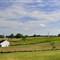Placid Fields