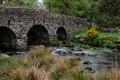 A Bridge in Dartmoore