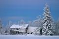 Barn in winter dressing