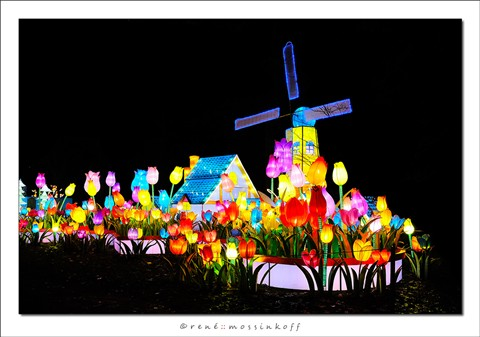 rotterdam_china_lights6