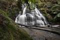 Henderson Falls .