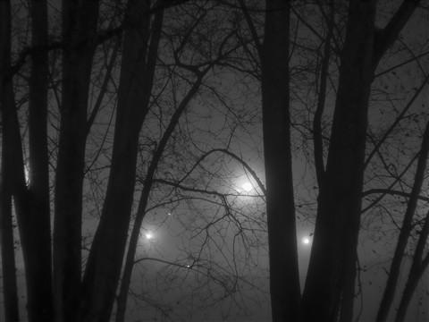Fog_Tiagoa