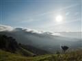 Foggy Broga Hill