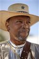 Alamo Defender