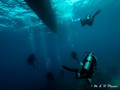 Under the Banca(diving boat) in the Philippines