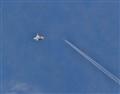 Pursuit Plane