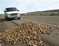 I-84 Potato Stop