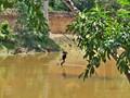PreahKhan200611-_59