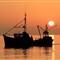 elgo fisherman