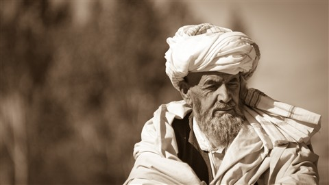 Afghan Sage