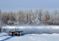 Peaceful winter scene, on the Bow River