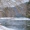 Clarion River in January No1: Ice forming on the Clarion River in January in Cook Forest State Park, Pennsylvania