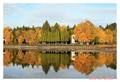 Lac St-Jean1
