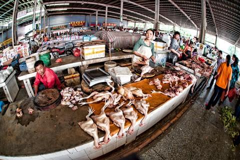 20121104-China Work Trip-57