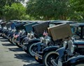 Georgetown Car Show
