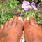Pretty Toes and Flowers