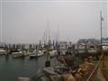 Rainy day at the shore
