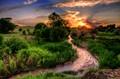 Curtis Creek Sunset-1