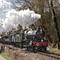 7812 Erlestoke Manor with morning goods on Saturday of Spring Gala approaching Hampton Loade a