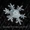 Snowflake 010 1200