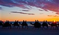 Broome  Camelride