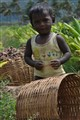 Kid in the Turmeric farm