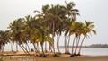 Ada beach, Ghana