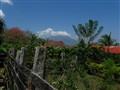 Garden and volcano
