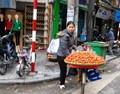 Hanoi strawberry vendor