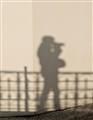 Shadow-0246