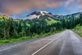 Paradise Valley Road, Mt. Rainier