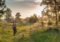 Magic sunset trail