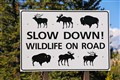 Sign in the Tetons