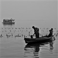 West Lake Fishermen