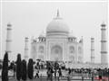 The great Taj