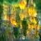 WenatcheeR_ReflectionsImpressions_WenatcheeNF_5XS_101008_HDR_1_1_1600px_reduced