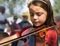 fiddler at work 2