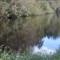 Water OOC jpg