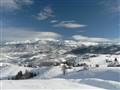 The white Transylvania