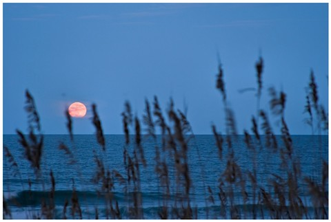 Atlantic Moonrise
