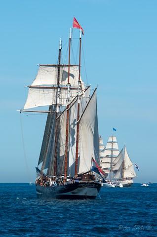 Tallships B-9334