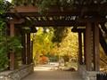 Descanso Gardens - La Canada-Flintridge, CA