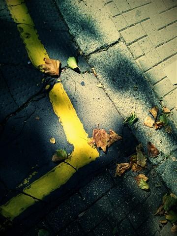 London Autumn 2010