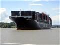 Container Ship (Larger than a cruise ship)