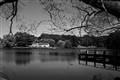 Daylesford Lake sml