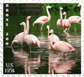 Bronx Zoo Stamp
