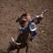 bull exiting cowboy 2